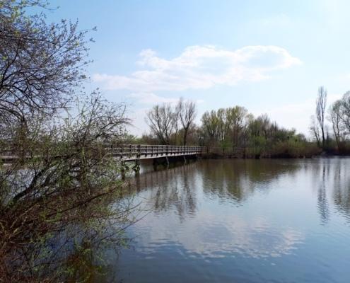Brücke zur Vogelinsel